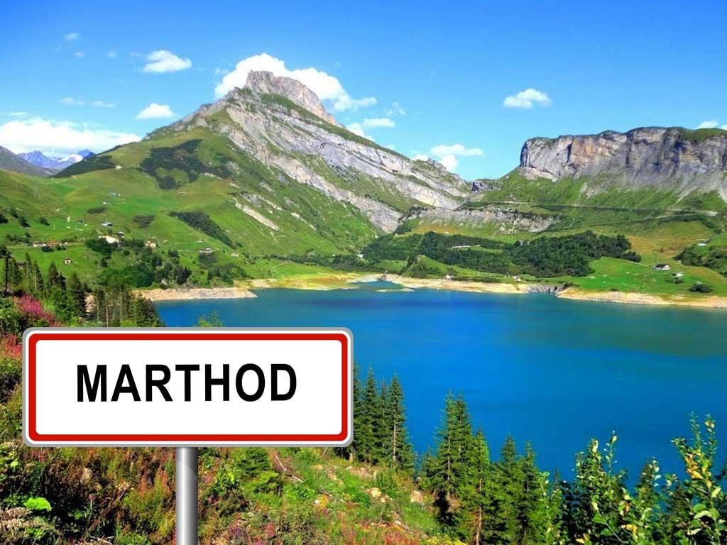Tag 22: 79 km | Genf – Marthod