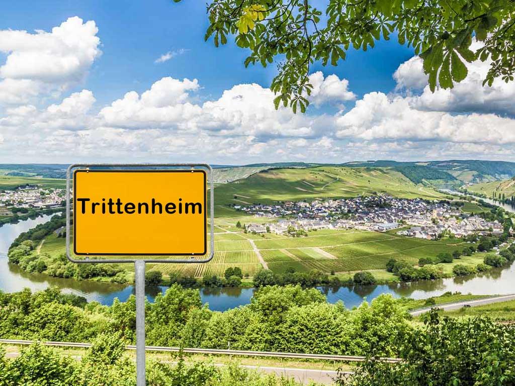Tag 8: 31 km | Irmenach – Trittenheim